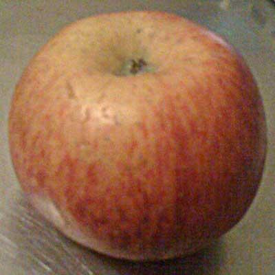 Apfel aus der Region